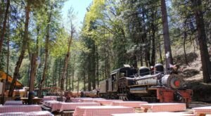 The Moonlit Train Ride At Sugar Pine Railroad In Northern California Will Give You An Evening To Remember