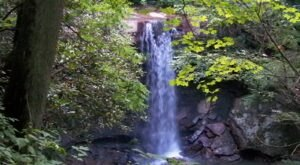 Cool Off This Summer With A Visit To These 7 Pennsylvania Waterfalls