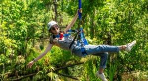 Zip Line over The Swamps At Louisiana's Newest Adventure Park, Zip NOLA