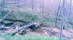Pack A Picnic For A Scenic Hike Along Grove Run Trail In Pennsylvania