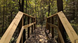 Adventure Awaits For You Along The 1-Mile Arrowwood Trail In Louisiana