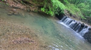 Bard Springs Recreation Area Is One Of The Most Underrated Summer Destinations In Arkansas