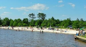 Sink Your Toes In The Sand Along The Beach At Fontainebleau State Park In Louisiana