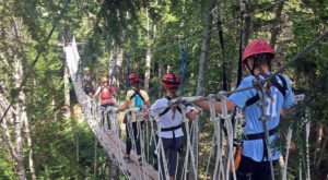 The Longest Elevated Canopy Tour In New Hampshire Can Be Found At Bretton Woods