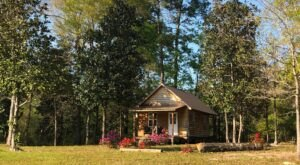 These Cabins Near Red Creek In Mississippi Let You Glamp In Style