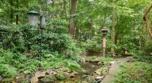 Explore Briar Bush Nature Center In Pennsylvania, The Perfect Family-Friendly Summer Destination