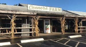 An Afternoon Of Outdoor Fun At Connors Farm Makes For The Perfect Day Trip In Massachusetts