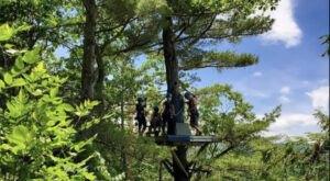 Whiz Through The Treetops At Zoar Outdoor Zip-Lining In Massachusetts