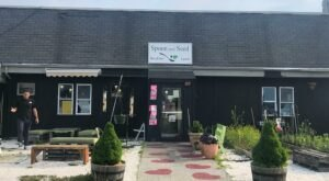 Spoon And Seed In Massachusetts Is Paradise For Anyone Loves Farm-Fresh Food And Sweets