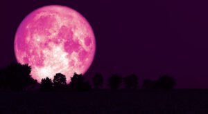 Don't Miss The Last Super Moon Of 2021 – A Full Strawberry Moon Will Appear Over North Carolina This Month