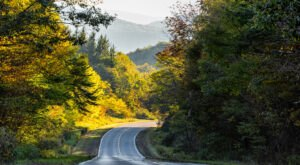 Hop In Your Car And Take The Highland Scenic Highway For An Incredible 43-Mile Scenic Drive In West Virginia