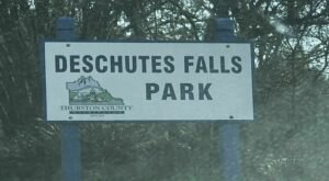 You'll Want To Spend The Entire Day At The Gorgeous Natural Pool In Washington's Deschutes Falls Park