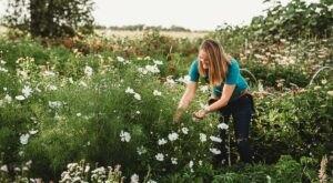 Get Lost In This Beautiful Flower Farm In South Dakota
