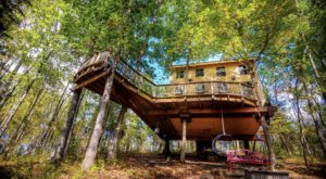 Sleep Among The Old-Growth Oaks And Hickories At The Kentucky Climber's Cottage Treehouse