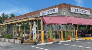 A Hidden Gem Restaurant In Richmond, The Grapevine Might Just Be One Of The Best Greek Restaurants In Virginia