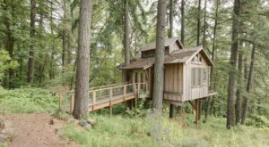 Experience A Fairytale Come To Life When You Stay At The Enchanted Forest Themed Treehouse In Oregon
