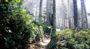 This Easy Oregon Hike Is Straight Out Of A Fairy Tale