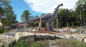 The Realistic Dinosaurs At Raptor Falls Mini Golf In Maine Make For A Roaring Good Time