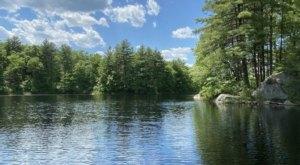 Hike Through Bird Street Conservation Area Loop In Massachusetts For An Incredible Birdwatching Adventure