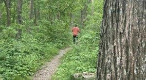 Follow Scenic Switchbacks To A 360-Degree Mountain View When You Hike Virginia's Flat Top Mountain