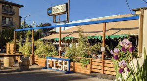 It Doesn't Get Any Fresher Than Flying Fish Company, A Fresh Catch Market In Oregon