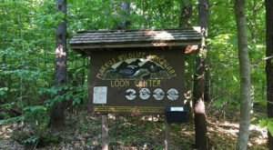 New Hampshire's Loon Center Is A 200-Acre Nature Sanctuary On Lake Winnipesaukee