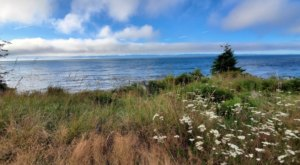 This Resort RV Park In Washington Was Recently Named One Of The Most Beautiful In The Country