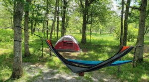 Pitch Your Tent Within Walking Distance To 3 Waterfalls At Big Meadows Campground In Virginia