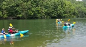 Kayak In Red River Gorge With A Fun-Filled Mill Creek Adventure In Kentucky