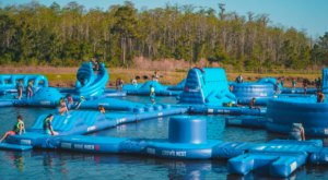 Visit Nona Adventure Park In Florida For The Most Family Fun You Can Cram Into One Summer Day