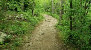 A Short-And-Sweet 1.5-Mile Mountain Loop, It's Easy To See Why Stony Man Is One Of Virginia's Favorite Hikes