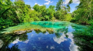 Ichetucknee Springs Is The Single Best State Park In Florida And It's Just Waiting To Be Explored