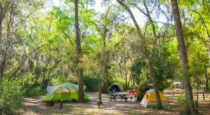 Spend A Weekend In The Wooded Wonderland That Is Jekyll Island Campground In Georgia
