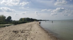 The Beach Near Detroit That's Unlike Any Other In The World