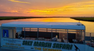 The Unusual Safari In New Jersey That Will Awe And Delight The Whole Family