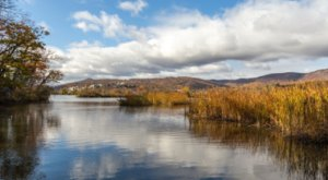 New York's Constitution Marsh Trail Leads To A Magnificent Hidden Oasis