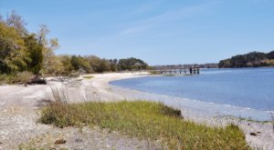 Hike Through This Botanical Garden To The Intracoastal Waterway On A 2.4-Mile Coastal Trail In South Carolina
