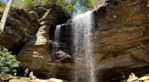 Take A Guided Waterfall Hike In North Carolina With An Expert Naturalist To Gain Special Insights Into The Area