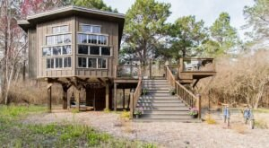 Experience A Fairytale Come To Life When You Stay At The Wildflower Treehouse In South Carolina