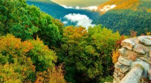 7 Scenic Overlooks To Visit In West Virginia When You Need An Extra Big Dose Of Nature's Beauty
