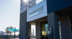 The Burrow Cafe Serves Some Of The Best Crepes In All Of New Mexico