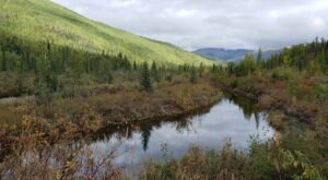Hit The Hot Springs To Relax After You Explore This Easy Tundra Trail In Alaska