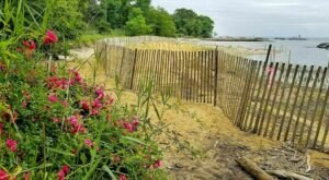 Walk Alongside The Bay On The 4-Mile Beverly-Triton Loop In Maryland