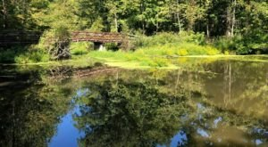 The Hike To Ohio's Pretty Little Mallard Lake Is Short And Sweet