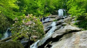 Georgia's Holcomb Creek Trail Leads To A Magnificent Hidden Oasis