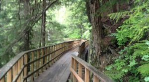 Hike The Short And Sweet Gold Creek Flume Trail All The Way To A Waterfall Right Outside Of Alaska's Capitol