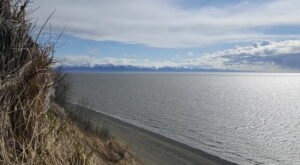Explore The Hidden Trails Of Kincaid Park In Alaska's Biggest City For A Fun Summer Outing