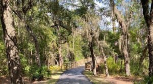 You'll Discover Lots Of Wildlife And Beautiful Scenery While Hiking Alabama's Rosemary Dunes Trail