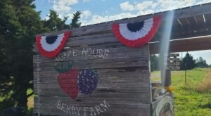 Pick Your Own Berries And Make Sweet Jam At Agape House Berry Farm In Oklahoma