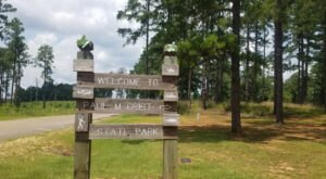Visit Alabama's Paul M. Grist State Park For An Unforgettable Summer Day Trip